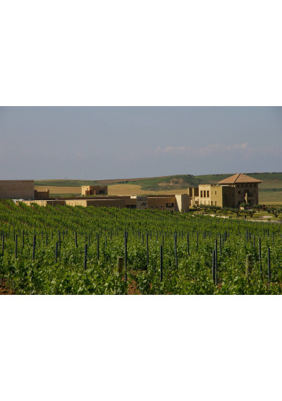 Bodega Pagos de Araiz in Olite, Navarra