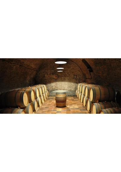 Im Weinkeller der Bodegas Leda in Tudela de Duero