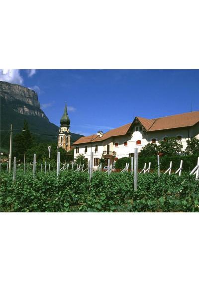 Weingut Cantina St. Pauls in Südtirol