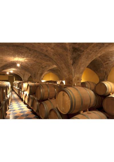 Im Weinkeller von Celler Vall-Llach, Porrera