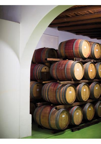 Weingut Diemersdal im Fasslager