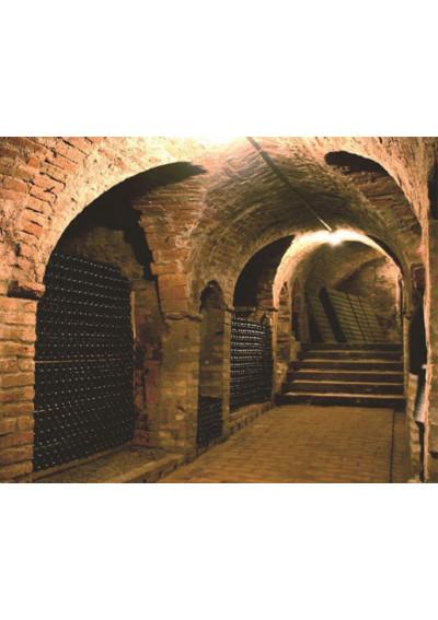 Flaschenfriedhof Castello di Neive