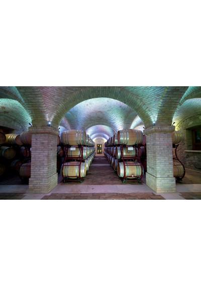 Fasslager im Weinkeller Borgo La Caccia in Pozzolengo