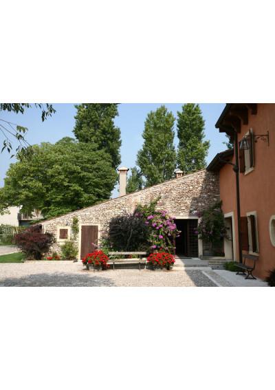 Cantina Azienda Agricultura Gorgo, Custoza - Gardasee