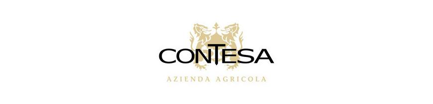 Contesa di Rocco Passetti