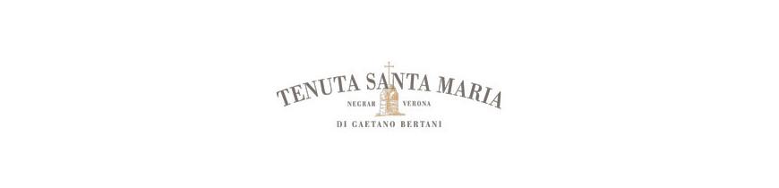 Tenuta Santa Maria