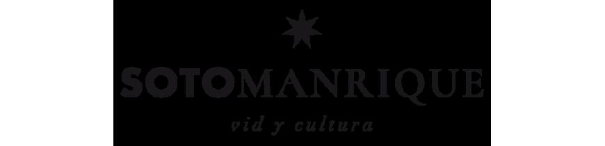 Soto Manrique Vid y Cultura